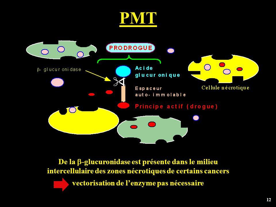 12 PMT De la -glucuronidase est présente dans le milieu intercellulaire des zones nécrotiques de certains cancers vectorisation de lenzyme pas nécessa