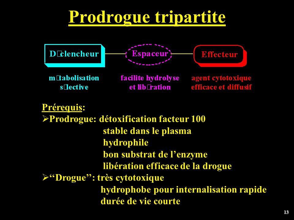 13 Prodrogue tripartite Prérequis: Prodrogue: détoxification facteur 100 stable dans le plasma hydrophile bon substrat de lenzyme libération efficace