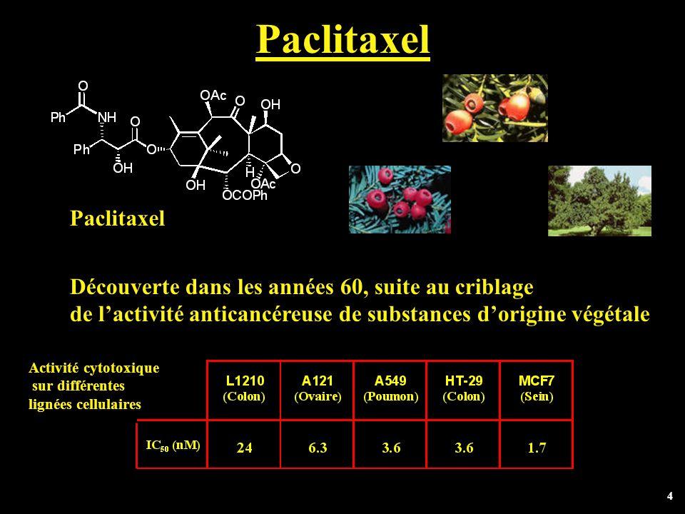 4 Paclitaxel Découverte dans les années 60, suite au criblage de lactivité anticancéreuse de substances dorigine végétale Paclitaxel Activité cytotoxi
