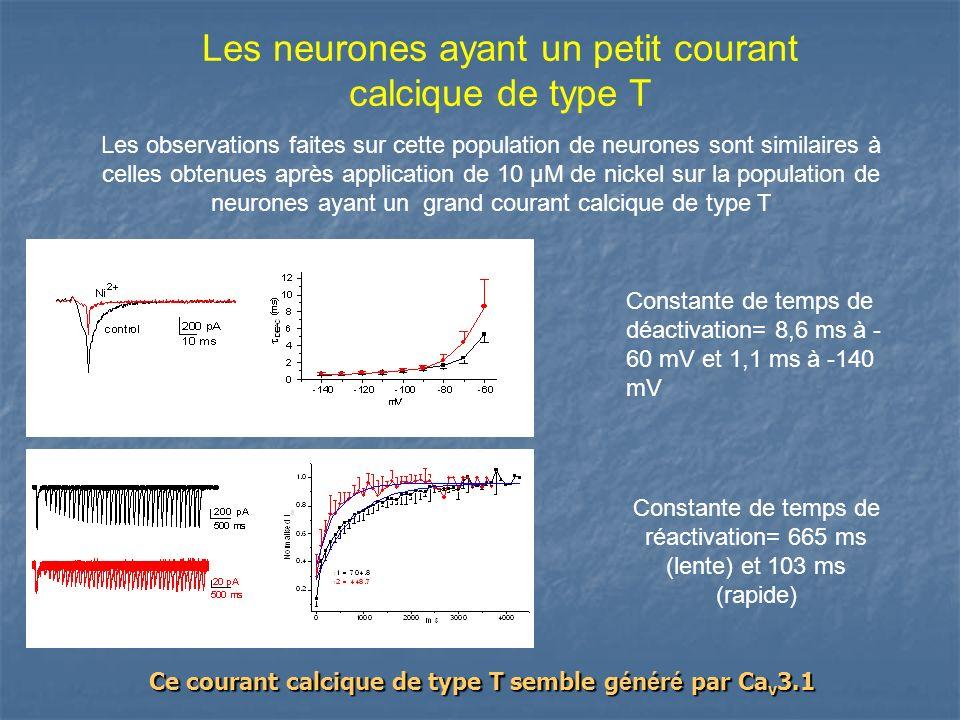 Les neurones ayant un petit courant calcique de type T Les observations faites sur cette population de neurones sont similaires à celles obtenues aprè