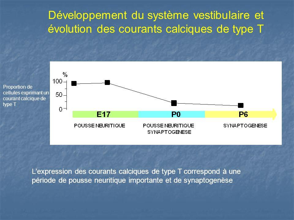 Développement du système vestibulaire et évolution des courants calciques de type T Lexpression des courants calciques de type T correspond à une péri