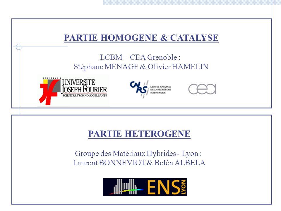 PARTIE HOMOGENE & CATALYSE LCBM – CEA Grenoble : Stéphane MENAGE & Olivier HAMELIN PARTIE HETEROGENE Groupe des Matériaux Hybrides - Lyon : Laurent BO