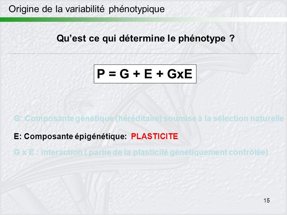 15 Origine de la variabilité phénotypique Quest ce qui détermine le phénotype ? P = G + E + GxE G: Composante génétique (héréditaire) soumise à la sél