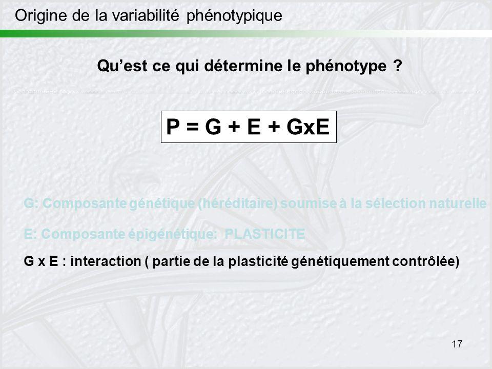 17 Origine de la variabilité phénotypique Quest ce qui détermine le phénotype ? P = G + E + GxE G: Composante génétique (héréditaire) soumise à la sél