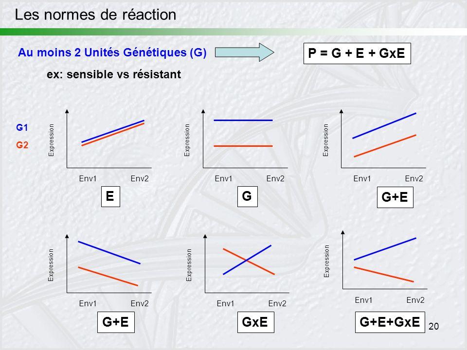 20 ex: sensible vs résistant G Expression Env1Env2 Expression Env1Env2 G1 G2 E Expression Env1Env2 G+E Expression Env1Env2 G+E Expression Env1Env2 G+E
