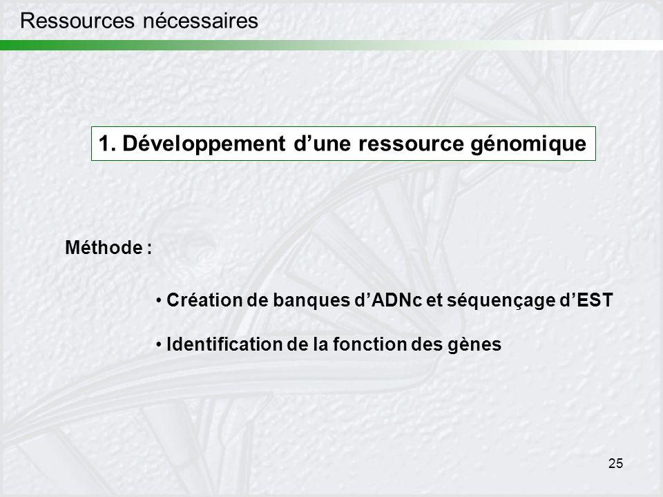 25 Méthode : Création de banques dADNc et séquençage dEST Identification de la fonction des gènes Ressources nécessaires 1. Développement dune ressour
