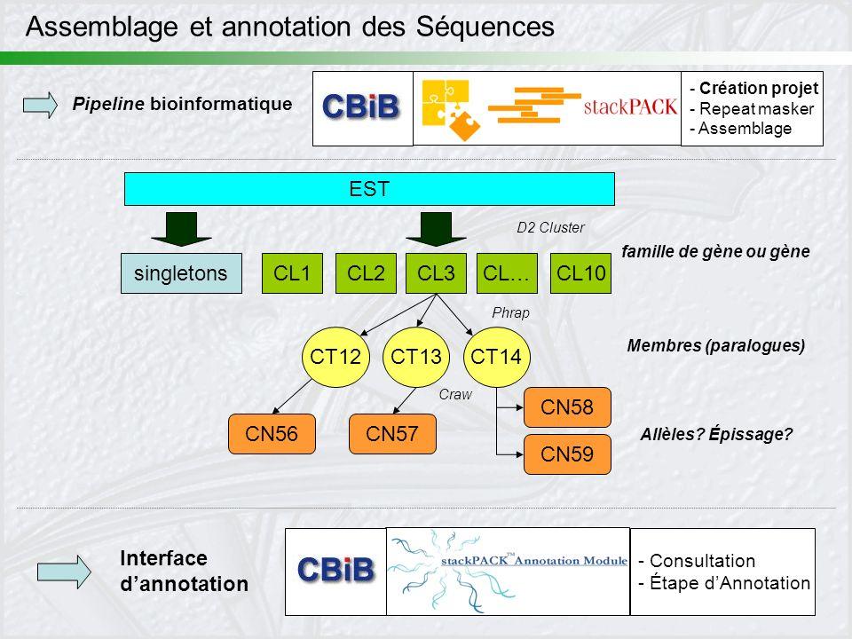 28 Assemblage et annotation des Séquences EST CL1CL2CL3CL…CL10 CT12CT13CT14 CN56CN57 CN59 CN58 D2 Cluster Craw Phrap singletons - Création projet - Re