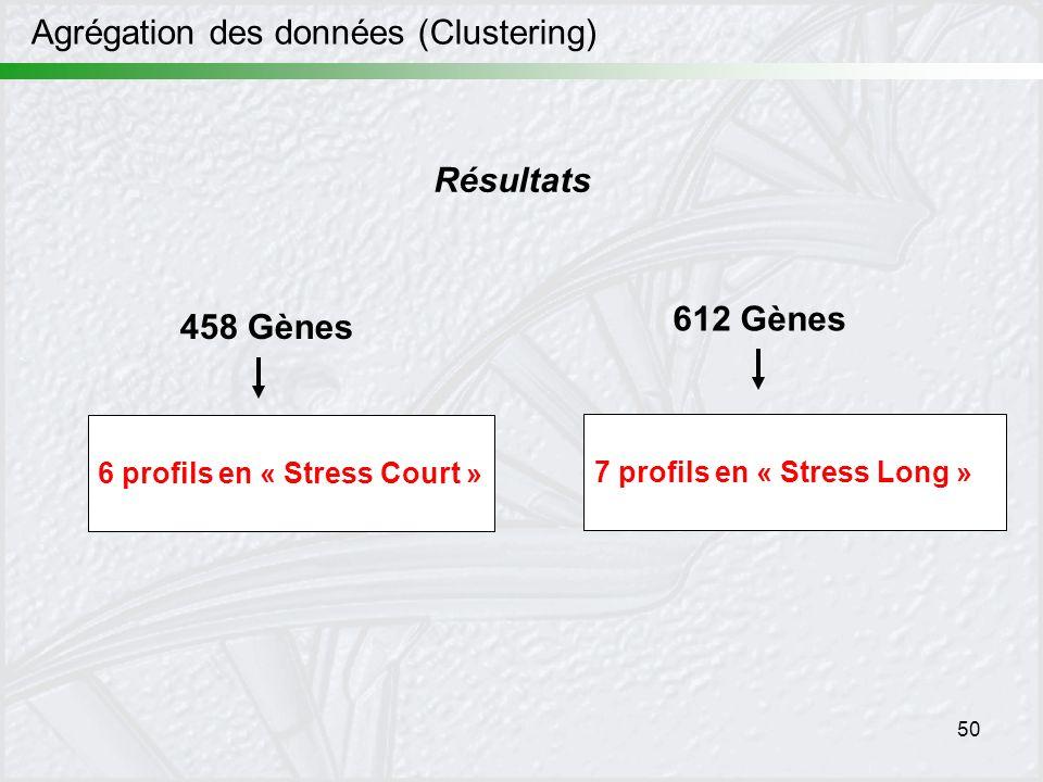 50 Résultats 6 profils en « Stress Court » 7 profils en « Stress Long » 458 Gènes 612 Gènes Agrégation des données (Clustering)