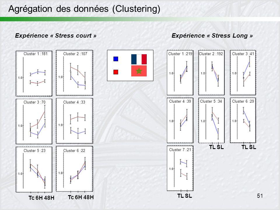 51 Agrégation des données (Clustering) Expérience « Stress court »Expérience « Stress Long » Tc 6H 48H TL SL Cluster 1 :181Cluster 2 :107 Cluster 3 :7