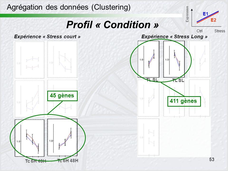 53 Agrégation des données (Clustering) Expérience « Stress court »Expérience « Stress Long » Tc 6H 48H Profil « Condition » TL SL 45 gènes 411 gènes E