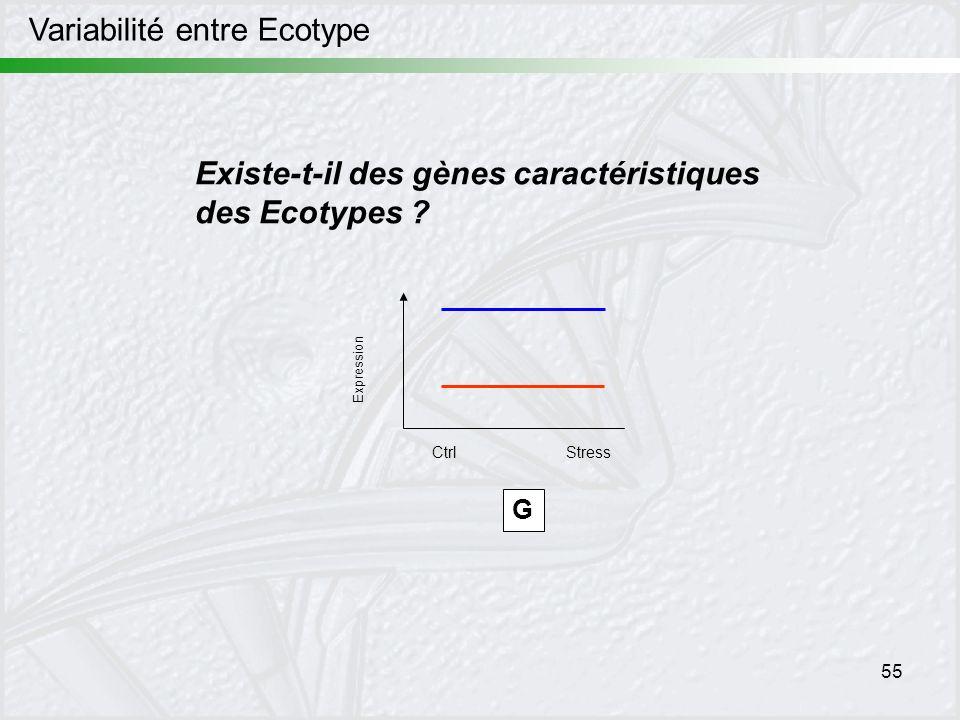 55 Variabilité entre Ecotype Existe-t-il des gènes caractéristiques des Ecotypes ? G Expression CtrlStress