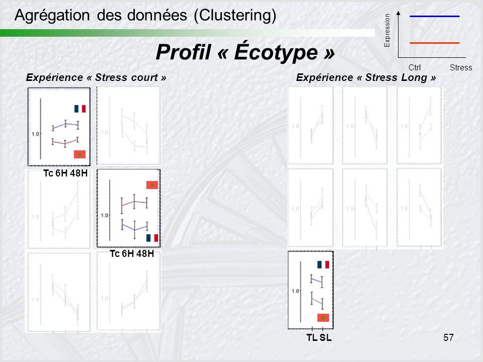 57 Agrégation des données (Clustering) Expérience « Stress court »Expérience « Stress Long » TL SL Profil « Écotype » Tc 6H 48H Expression CtrlStress
