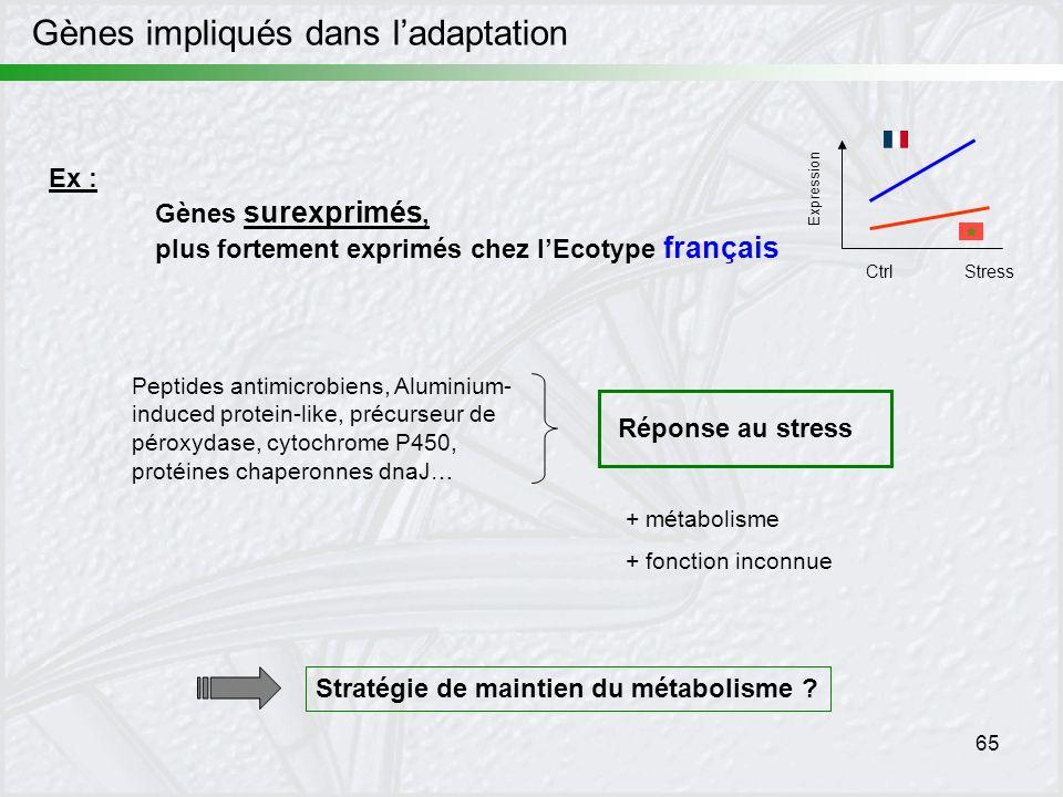 65 Expression CtrlStress Ex : Gènes surexprimés, plus fortement exprimés chez lEcotype français Peptides antimicrobiens, Aluminium- induced protein-li