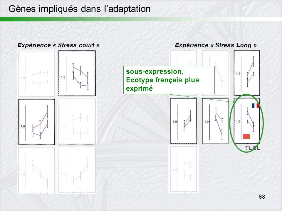 68 Expérience « Stress court »Expérience « Stress Long » TL SL sous-expression, Ecotype français plus exprimé Gènes impliqués dans ladaptation