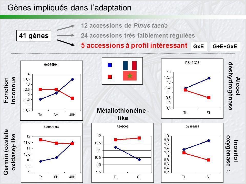 71 Gènes impliqués dans ladaptation 41 gènes 12 accessions de Pinus taeda 24 accessions très faiblement régulées 5 accessions à profil intéressant Alc