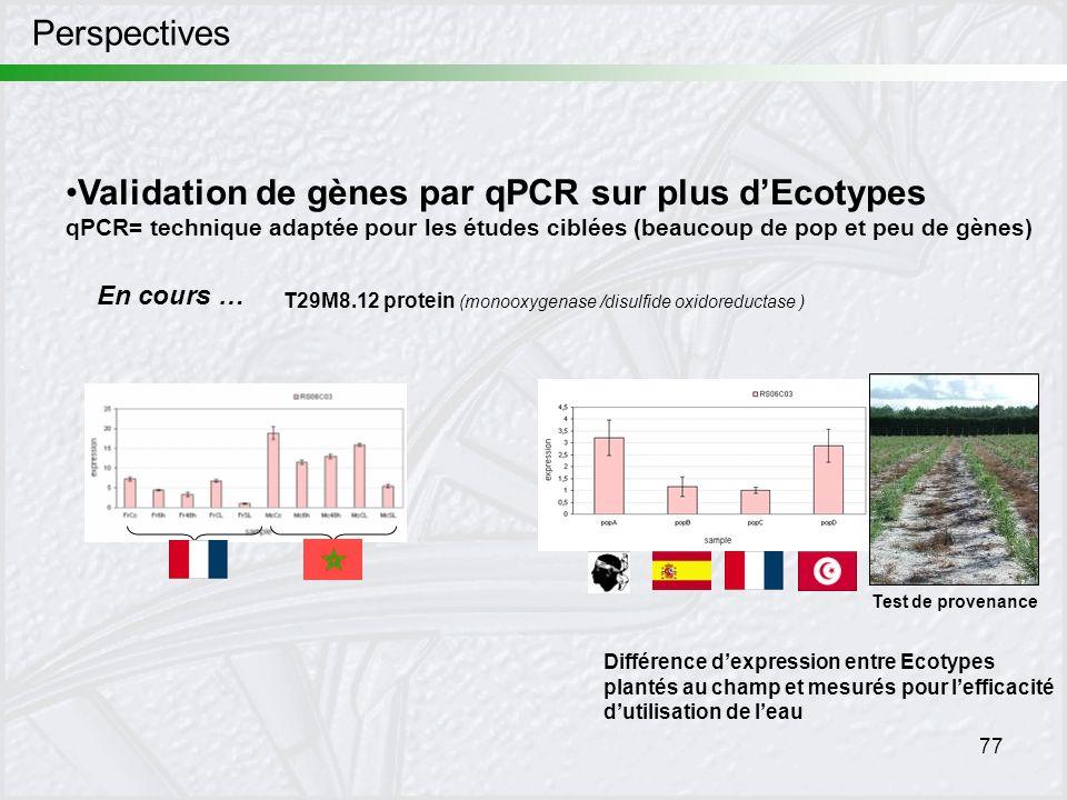 77 Perspectives Validation de gènes par qPCR sur plus dEcotypes qPCR= technique adaptée pour les études ciblées (beaucoup de pop et peu de gènes) Diff