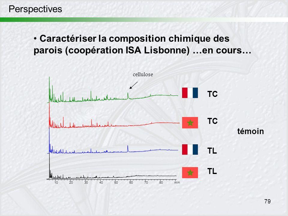 79 Perspectives Caractériser la composition chimique des parois (coopération ISA Lisbonne) …en cours… min 1020304050607080 cellulose témoin TC TL TC