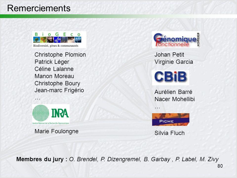 80 Remerciements Christophe Plomion Patrick Léger Céline Lalanne Manon Moreau Christophe Boury Jean-marc Frigério … Johan Petit Virginie Garcia Silvia