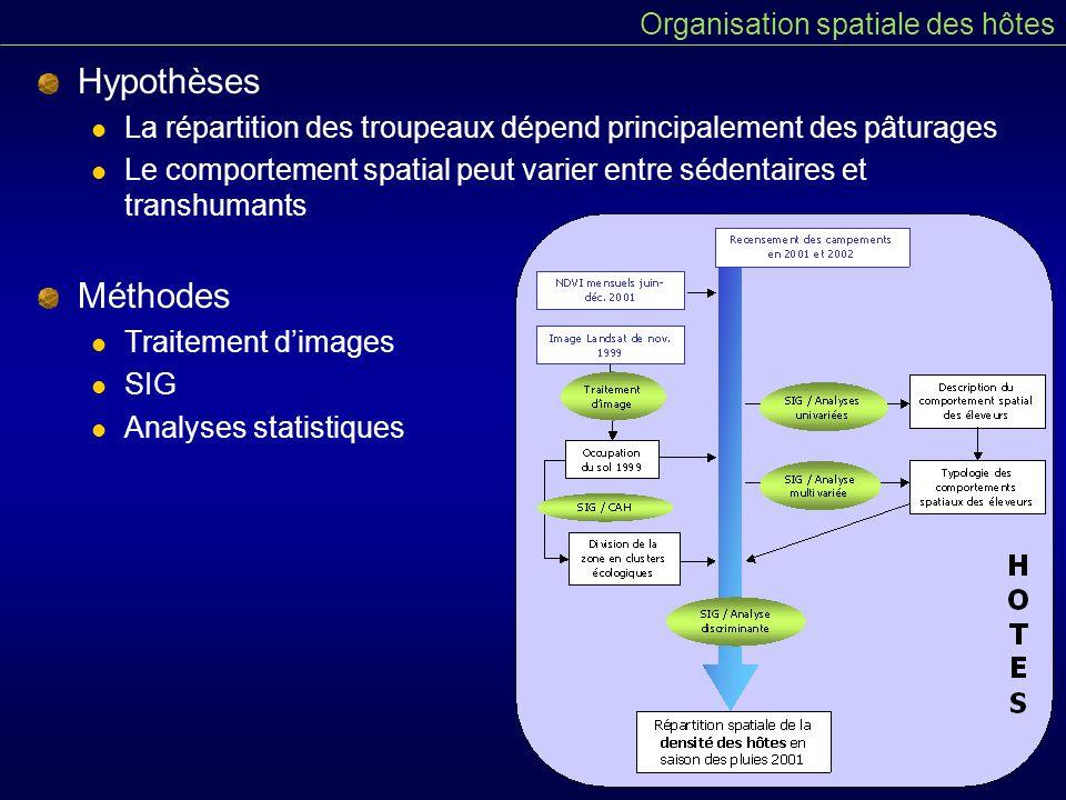 Hypothèses La répartition des troupeaux dépend principalement des pâturages Le comportement spatial peut varier entre sédentaires et transhumants Méthodes Traitement dimages SIG Analyses statistiques Organisation spatiale des hôtes