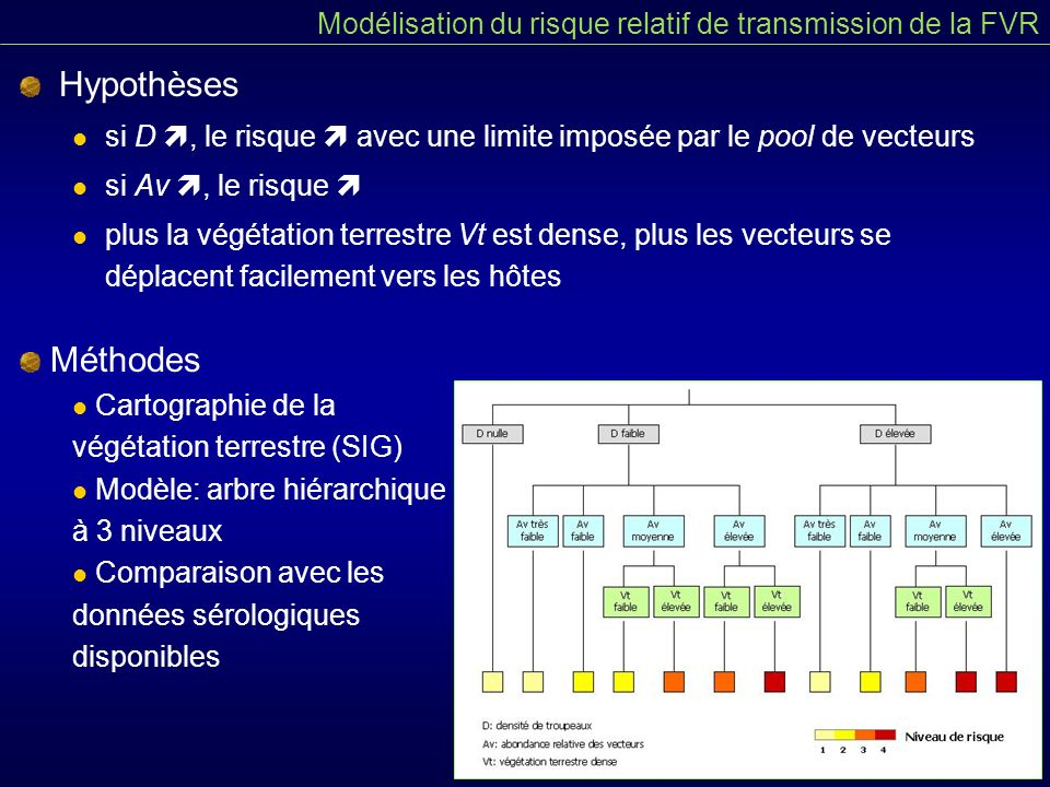 Hypothèses si D, le risque avec une limite imposée par le pool de vecteurs si Av, le risque plus la végétation terrestre Vt est dense, plus les vecteurs se déplacent facilement vers les hôtes Modélisation du risque relatif de transmission de la FVR Méthodes Cartographie de la végétation terrestre (SIG) Modèle: arbre hiérarchique à 3 niveaux Comparaison avec les données sérologiques disponibles