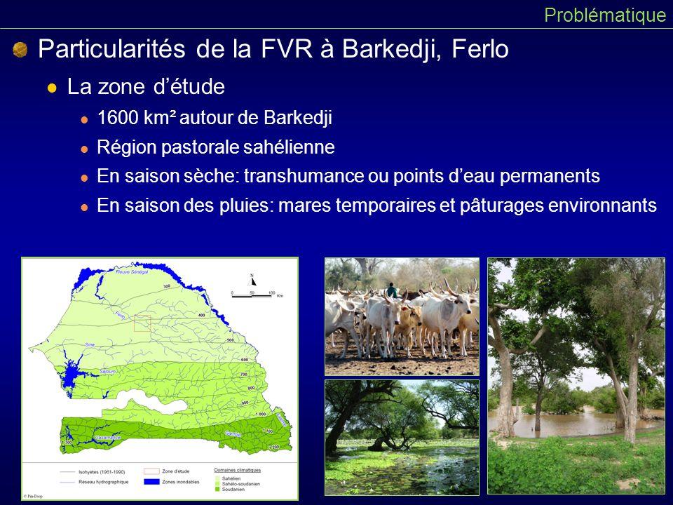 Particularités de la FVR à Barkedji, Ferlo La zone détude 1600 km² autour de Barkedji Région pastorale sahélienne En saison sèche: transhumance ou points deau permanents En saison des pluies: mares temporaires et pâturages environnants Problématique
