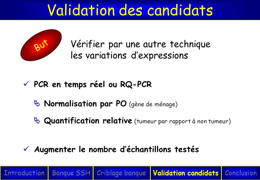 Validation des candidats IntroductionConclusionBanque SSHCriblage banqueValidation candidats PCR en temps réel ou RQ-PCR Normalisation par PO (gène de