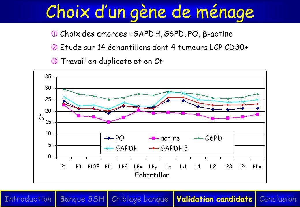 Choix dun gène de ménage IntroductionConclusionBanque SSHCriblage banqueValidation candidats Choix des amorces : GAPDH, G6PD, PO, -actine Etude sur 14