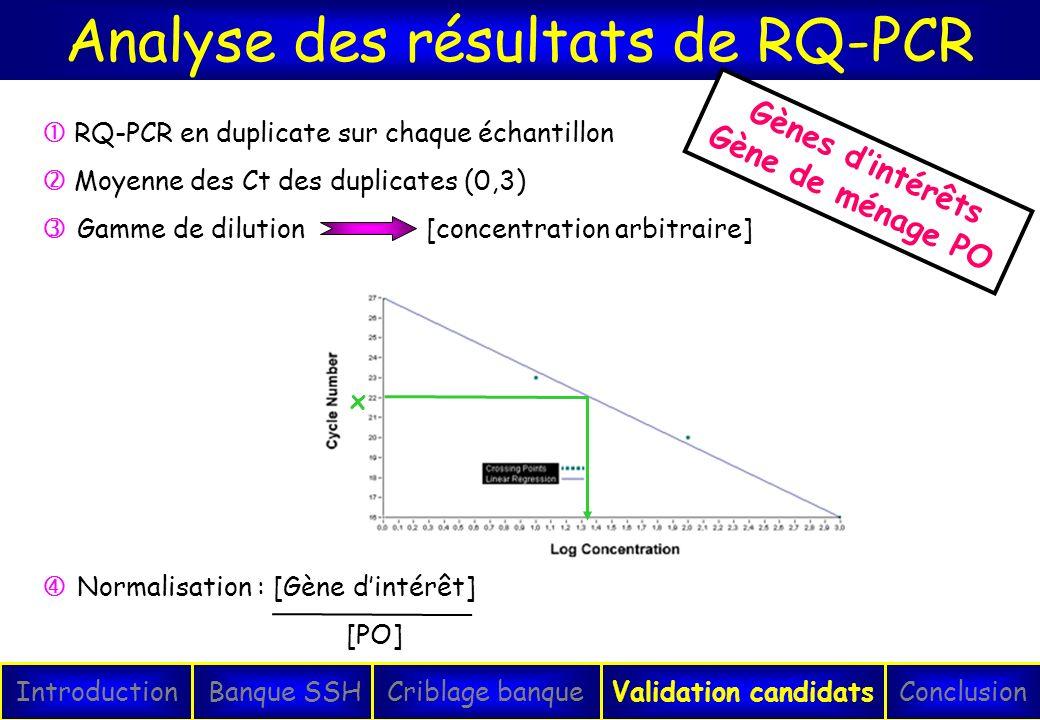 Analyse des résultats de RQ-PCR IntroductionConclusionBanque SSHCriblage banqueValidation candidats x RQ-PCR en duplicate sur chaque échantillon Moyen