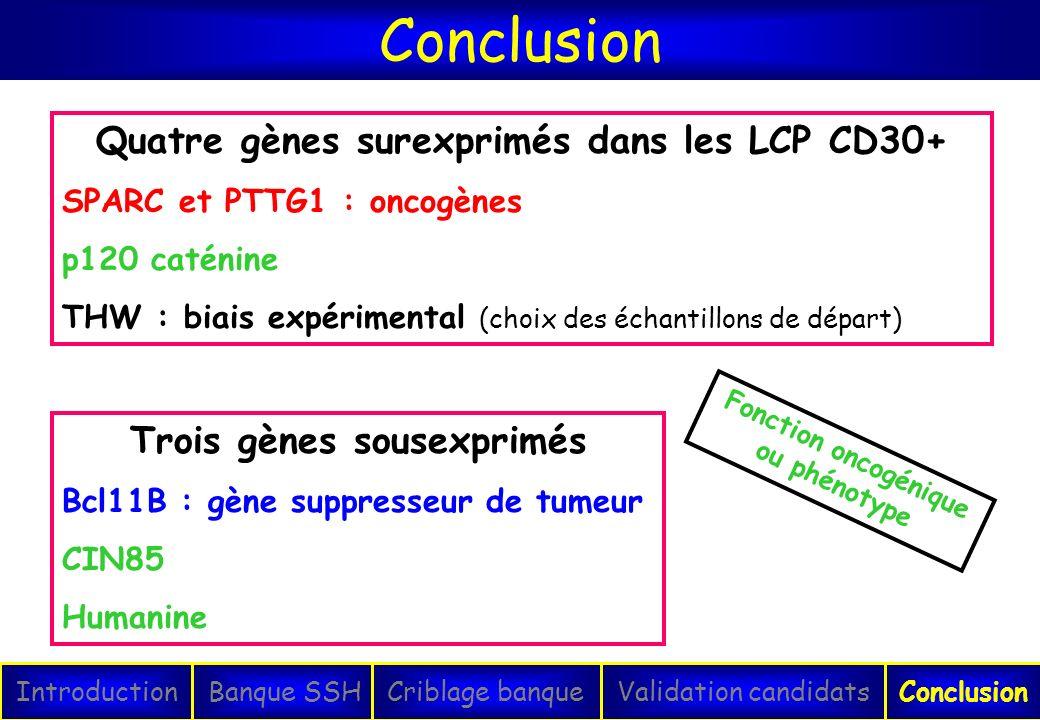 Conclusion IntroductionConclusionBanque SSHCriblage banqueValidation candidats Trois gènes sousexprimés Bcl11B : gène suppresseur de tumeur CIN85 Huma