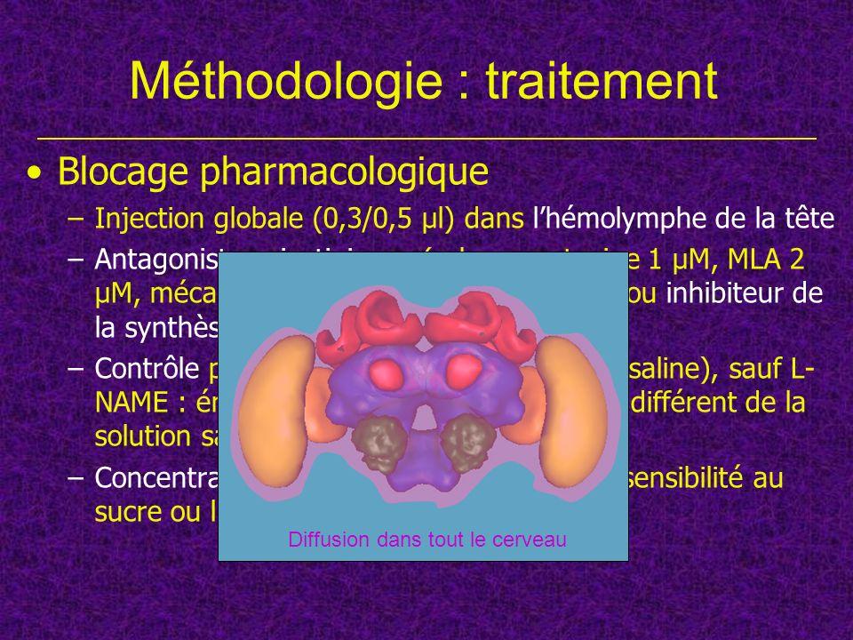 Blocage pharmacologique –Injection globale (0,3/0,5 µl) dans lhémolymphe de la tête –Antagonistes nicotiniques (α-bungarotoxine 1 µM, MLA 2 µM, mécamy