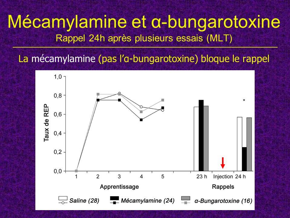 Mécamylamine et α-bungarotoxine Rappel 24h après plusieurs essais (MLT) La mécamylamine (pas lα-bungarotoxine) bloque le rappel