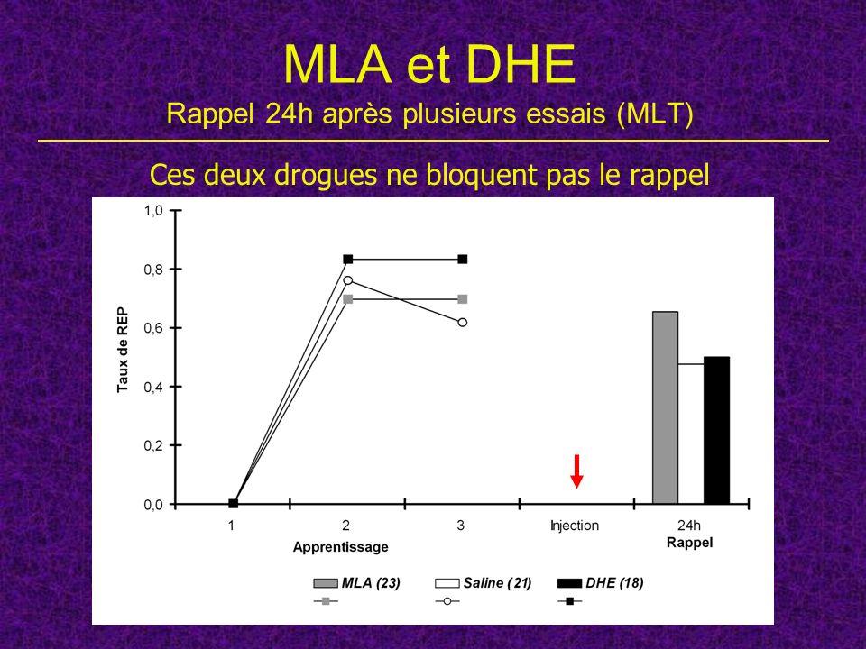 MLA et DHE Rappel 24h après plusieurs essais (MLT) Ces deux drogues ne bloquent pas le rappel