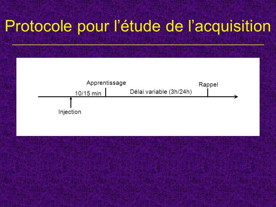 Protocole pour létude de lacquisition Injection Apprentissage Rappel Délai variable (3h/24h) 10/15 min