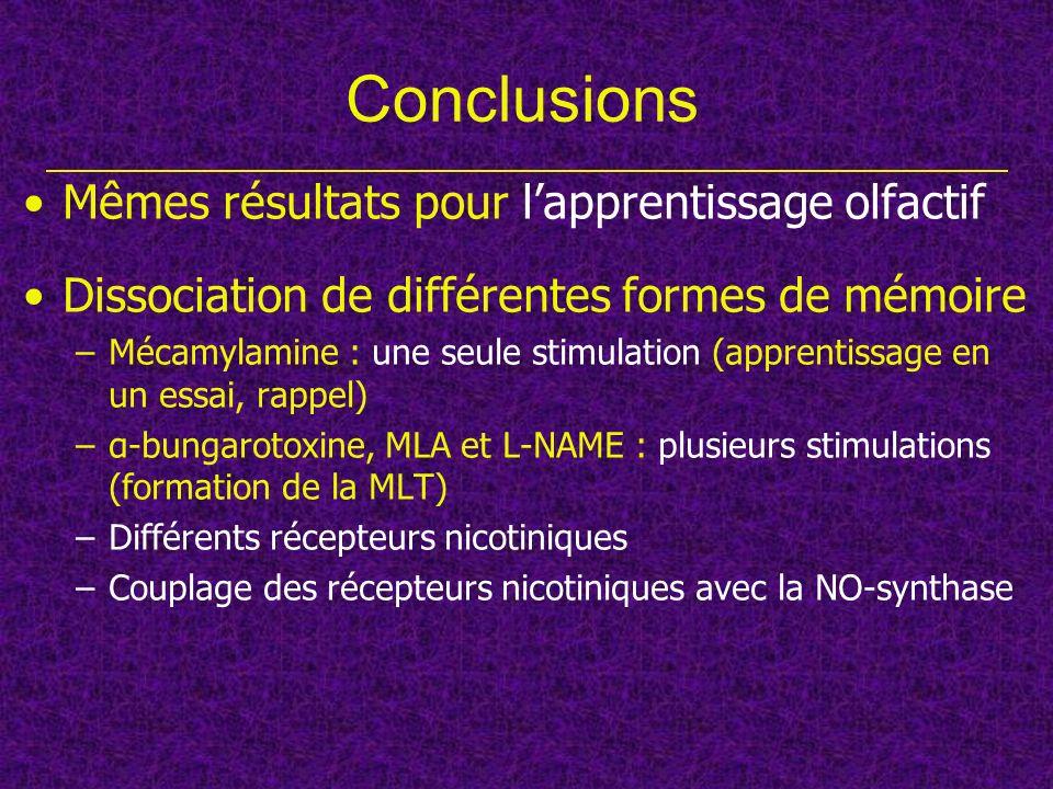 Conclusions Mêmes résultats pour lapprentissage olfactif Dissociation de différentes formes de mémoire –Mécamylamine : une seule stimulation (apprenti