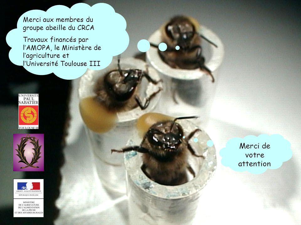 Merci aux membres du groupe abeille du CRCA Travaux financés par lAMOPA, le Ministère de lagriculture et lUniversité Toulouse III Merci de votre atten