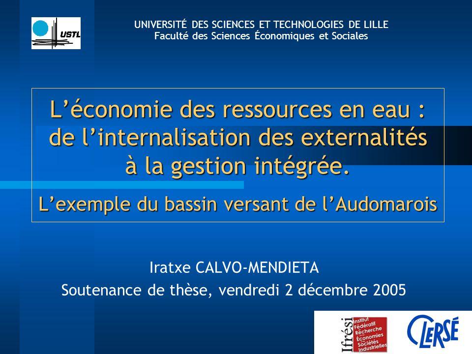 Léconomie des ressources en eau : de linternalisation des externalités à la gestion intégrée. Lexemple du bassin versant de lAudomarois Iratxe CALVO-M