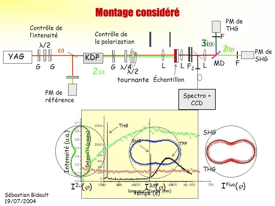 Sébastien Bidault 19/07/2004 350400450550600650 0 200 400 600 800 20000 30000 longueur donde (nm) Intensité (coups) SHG THG TPF I 2 ( ) I 3 ( ) I fluo