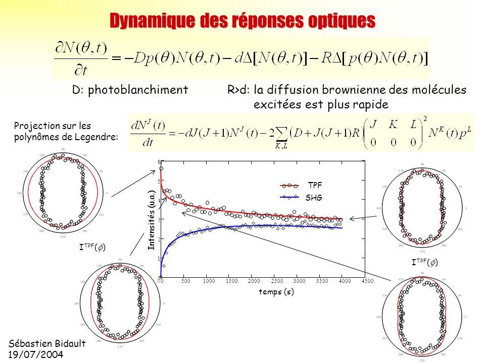 Sébastien Bidault 19/07/2004 D: photoblanchiment R>d: la diffusion brownienne des molécules excitées est plus rapide Projection sur les polynômes de L