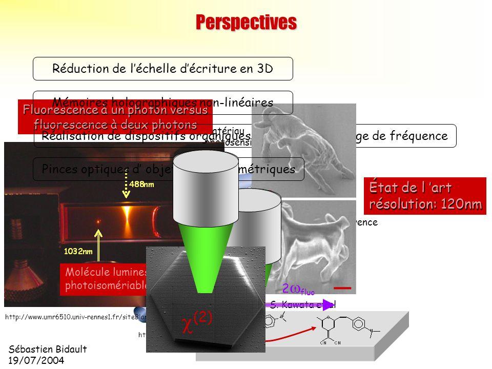 Sébastien Bidault 19/07/2004 motif dinterférence SLM onde signal (2 ?) onde de référence ( ?) matériau photosensible hologramme http://www.inphase-tec