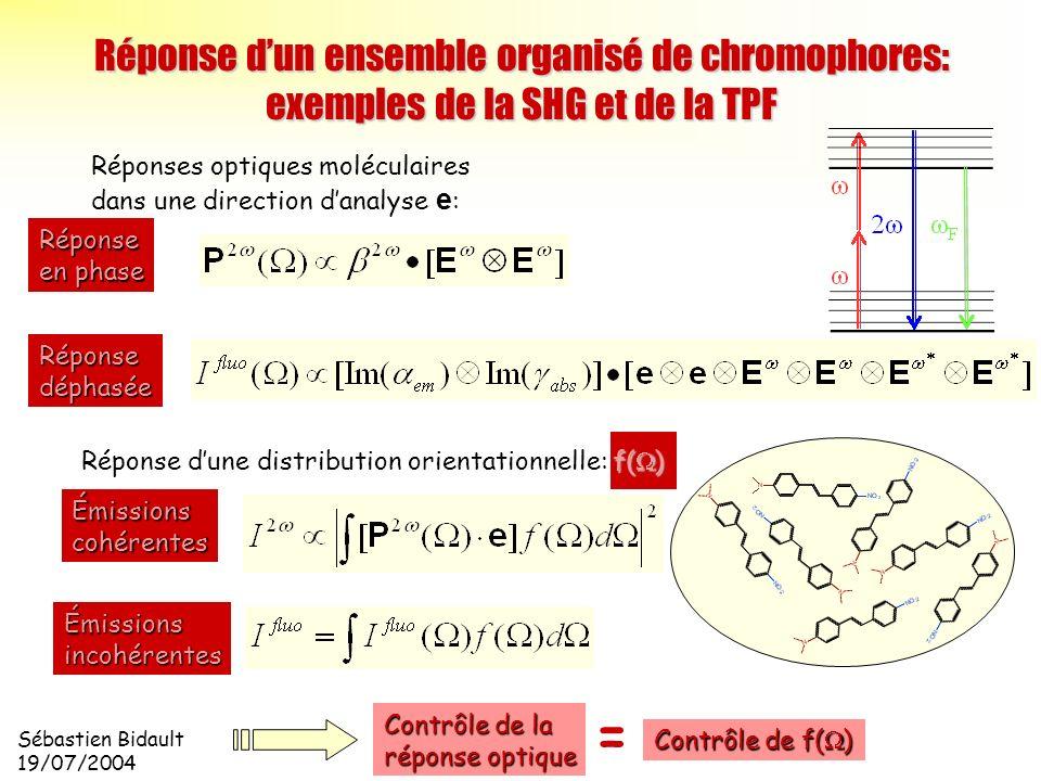 Sébastien Bidault 19/07/2004 Réponse dun ensemble organisé de chromophores: exemples de la SHG et de la TPF Réponses optiques moléculaires dans une di