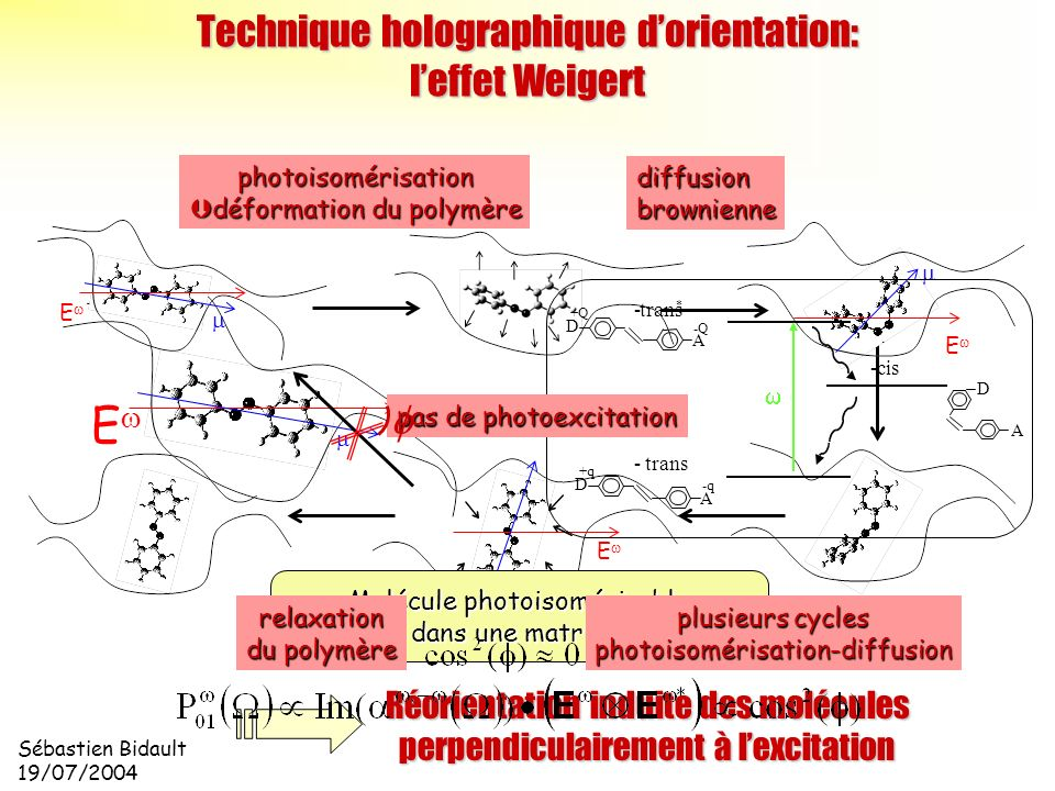 Sébastien Bidault 19/07/2004 E Technique holographique dorientation: leffet Weigert E E E photoisomérisation déformation du polymère déformation du po