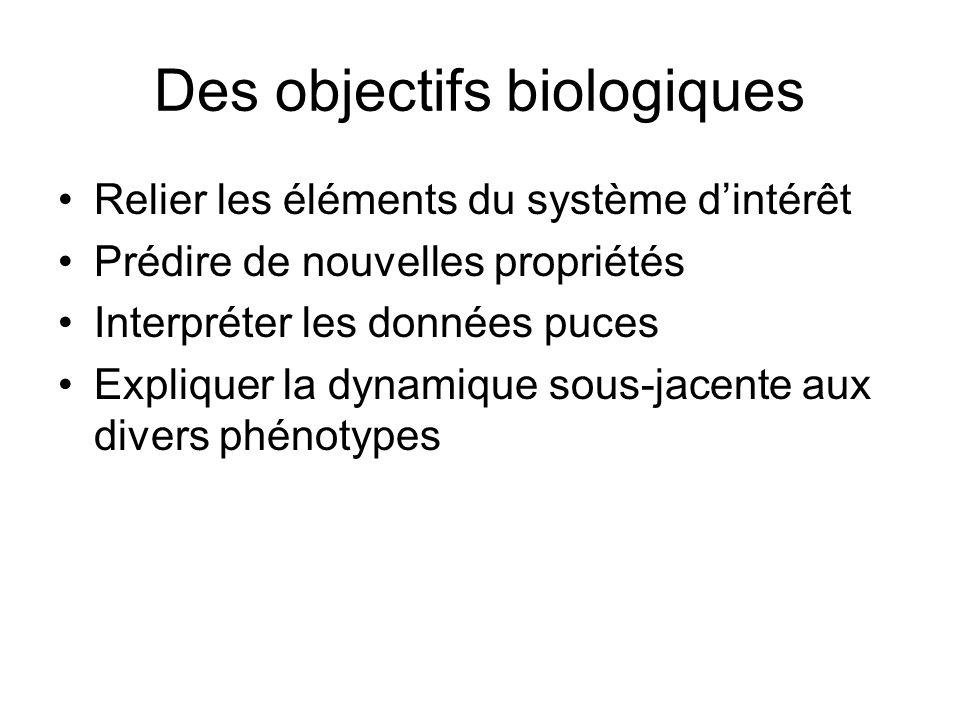 Des objectifs biologiques Relier les éléments du système dintérêt Prédire de nouvelles propriétés Interpréter les données puces Expliquer la dynamique sous-jacente aux divers phénotypes