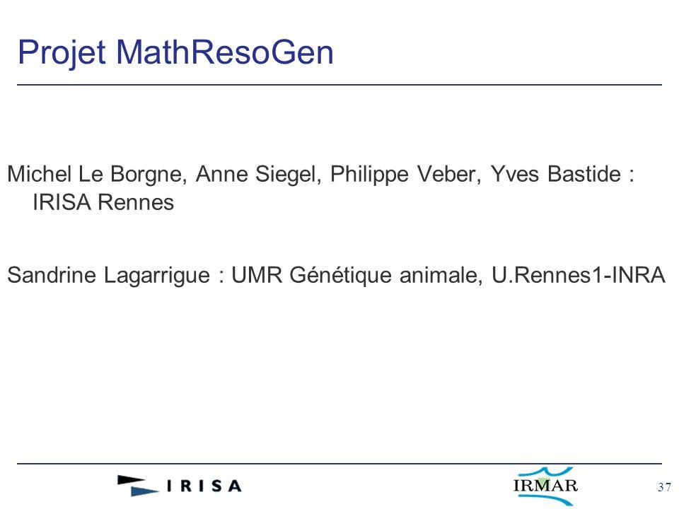 37 Projet MathResoGen Michel Le Borgne, Anne Siegel, Philippe Veber, Yves Bastide : IRISA Rennes Sandrine Lagarrigue : UMR Génétique animale, U.Rennes1-INRA