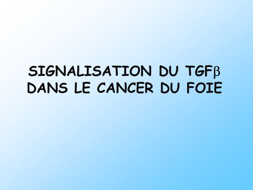 SIGNALISATION DU TGF DANS LE CANCER DU FOIE