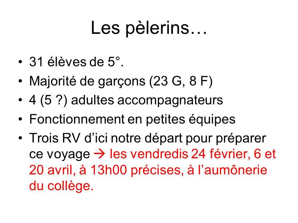 Les pèlerins… 31 élèves de 5°. Majorité de garçons (23 G, 8 F) 4 (5 ?) adultes accompagnateurs Fonctionnement en petites équipes Trois RV dici notre d