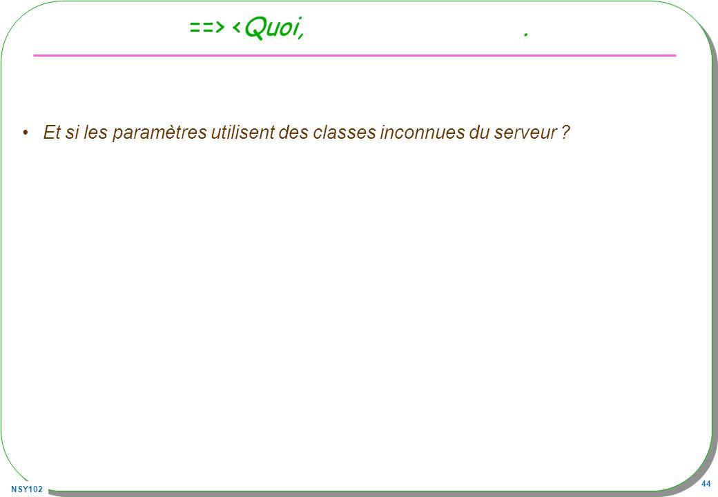 NSY102 44 ==> <Quoi,. Et si les paramètres utilisent des classes inconnues du serveur ?