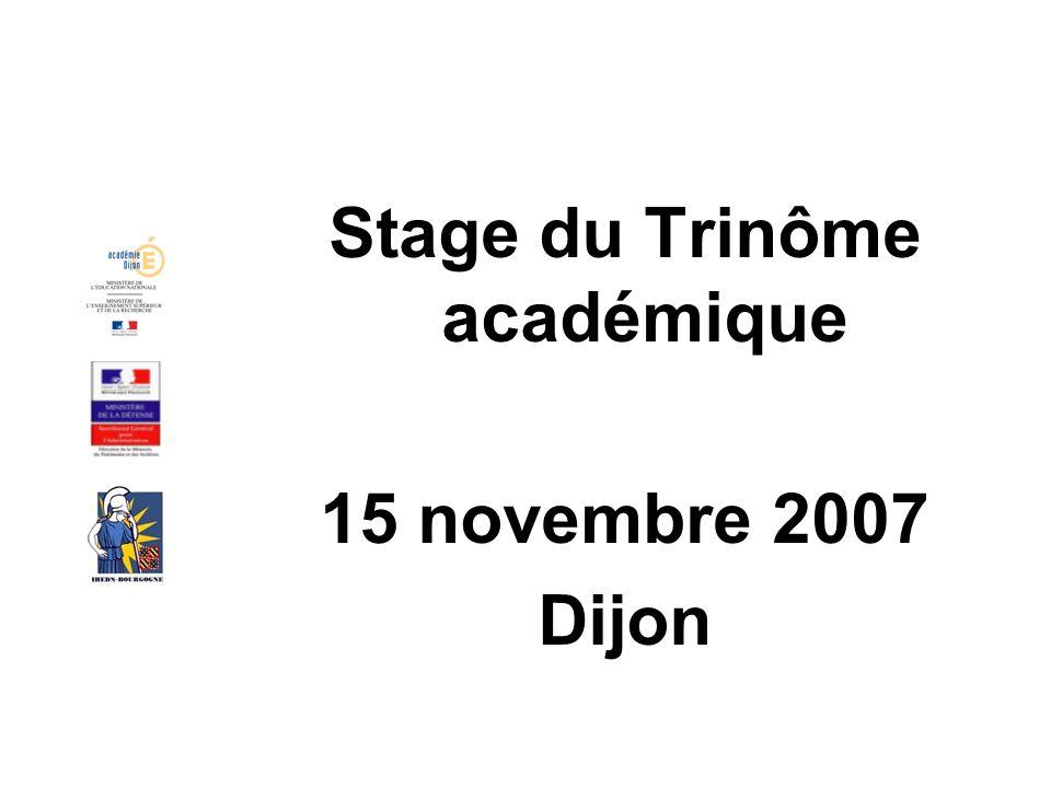 Stage du Trinôme académique 15 novembre 2007 Dijon