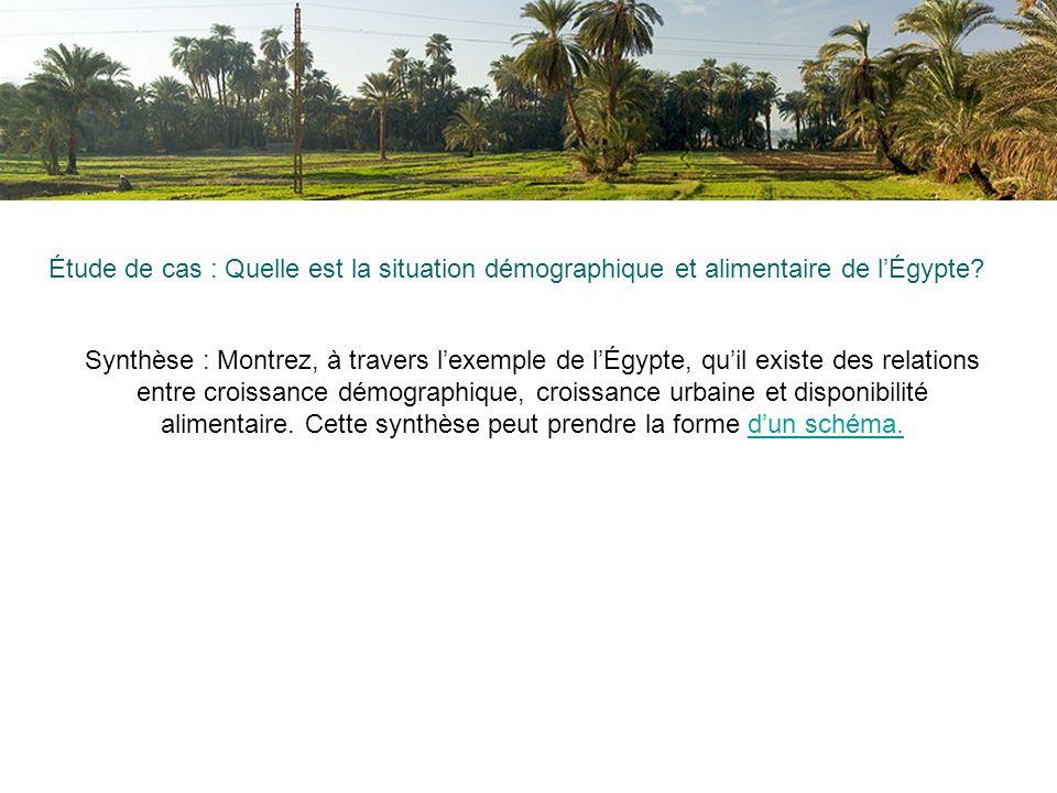 Étude de cas : Quelle est la situation démographique et alimentaire de lÉgypte? Synthèse : Montrez, à travers lexemple de lÉgypte, quil existe des rel