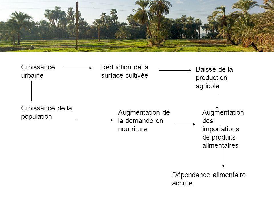 Croissance urbaine Croissance de la population Réduction de la surface cultivée Augmentation de la demande en nourriture Baisse de la production agric