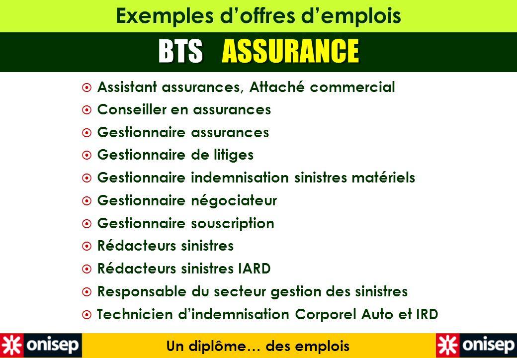 Exemples doffres demplois Un diplôme… des emplois Assistant assurances, Attaché commercial Conseiller en assurances Gestionnaire assurances Gestionnai